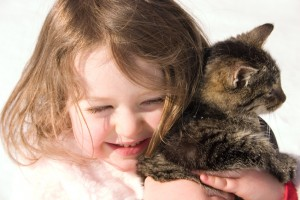 Assurance of your pet's comfort and safety.
